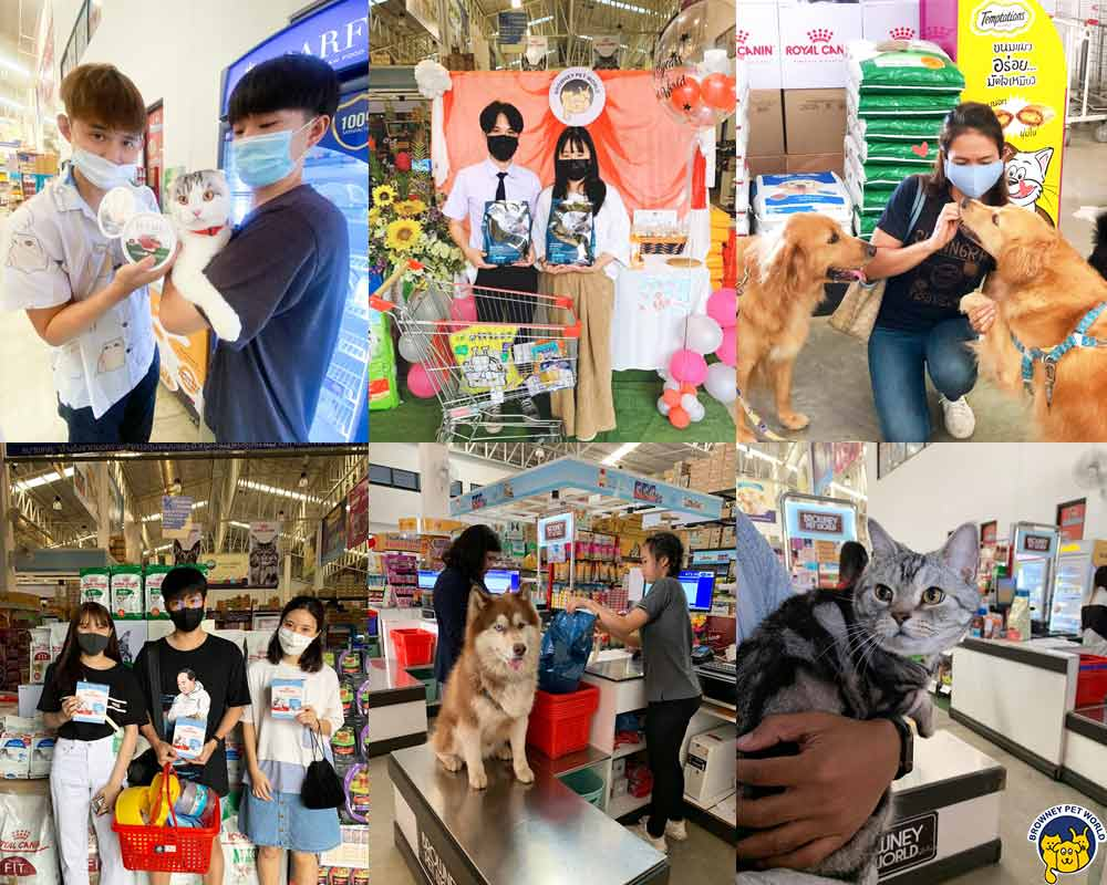 กิจกรรมภายในร้านเพ็ทช็อป Browney Pet World