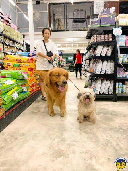 Dog with customer Browney Pet World