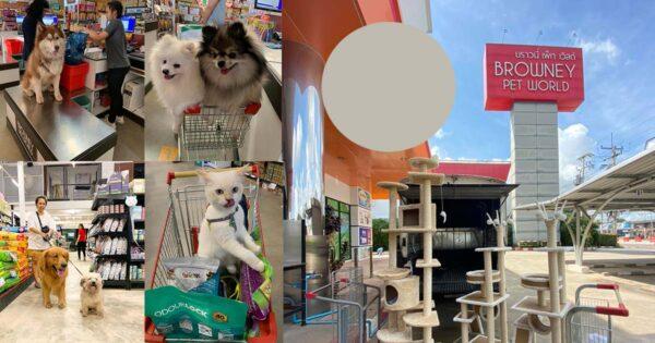 สำรองร้าน Pet Shop